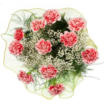 Carnival of Carnations Bouquet