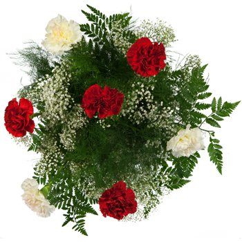 Cloud of Carnations Bouquet