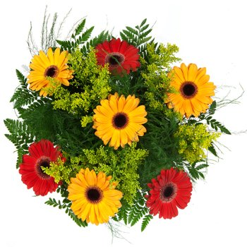Daisies Delight Bouquet