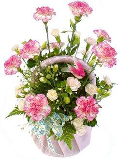 Basket Of Seasonal Blooms