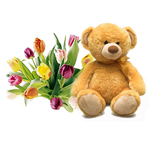 Tulips and Teddy delivered to Russia