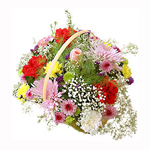 This vibrant bouquet will certainly brighten up any occasion.
