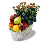 This is a perfect mix of tastes and colors. The blending of delicious fruit is sure to please them right away. The lovely plant will create long-lasting memories of your thoughtful gift for your loved one in Russia (or other CIS country).